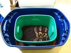 Do it yourself bsf bucket bio composter black soldier fly blog do it yourself bsf bucket bio composter black soldier fly blog solutioingenieria Image collections