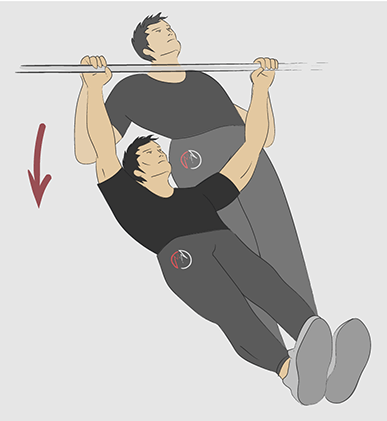 no equipment back exercises  back exercises exercise at