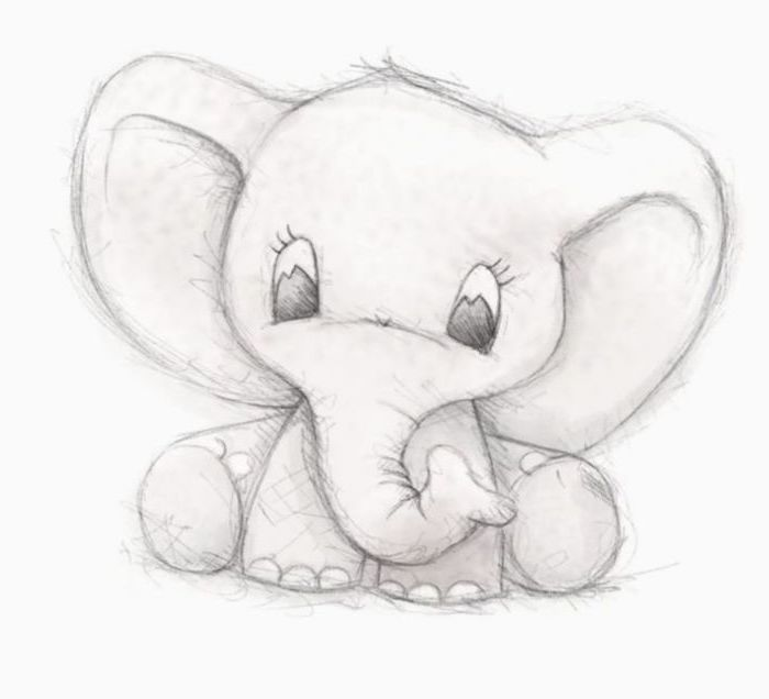 Baby Elephant Black And White Pencil Sketch On White Background Cool Things To Draw In 2020 Cute Elephant Drawing Baby Animal Drawings Cute Kawaii Drawings