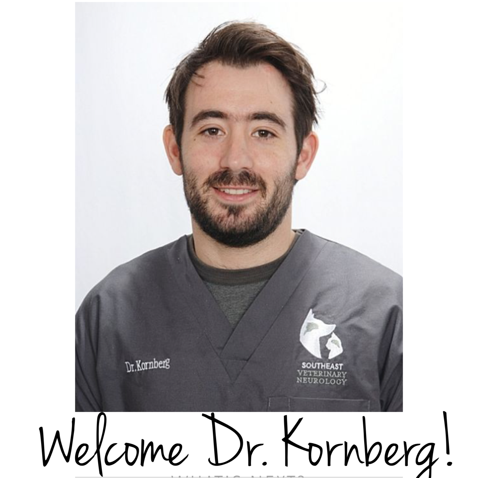 neurosurgeryresidency com neurosurgery personal we are incredibly happy to welcome dr simon kornberg board certified veterinary neurologist