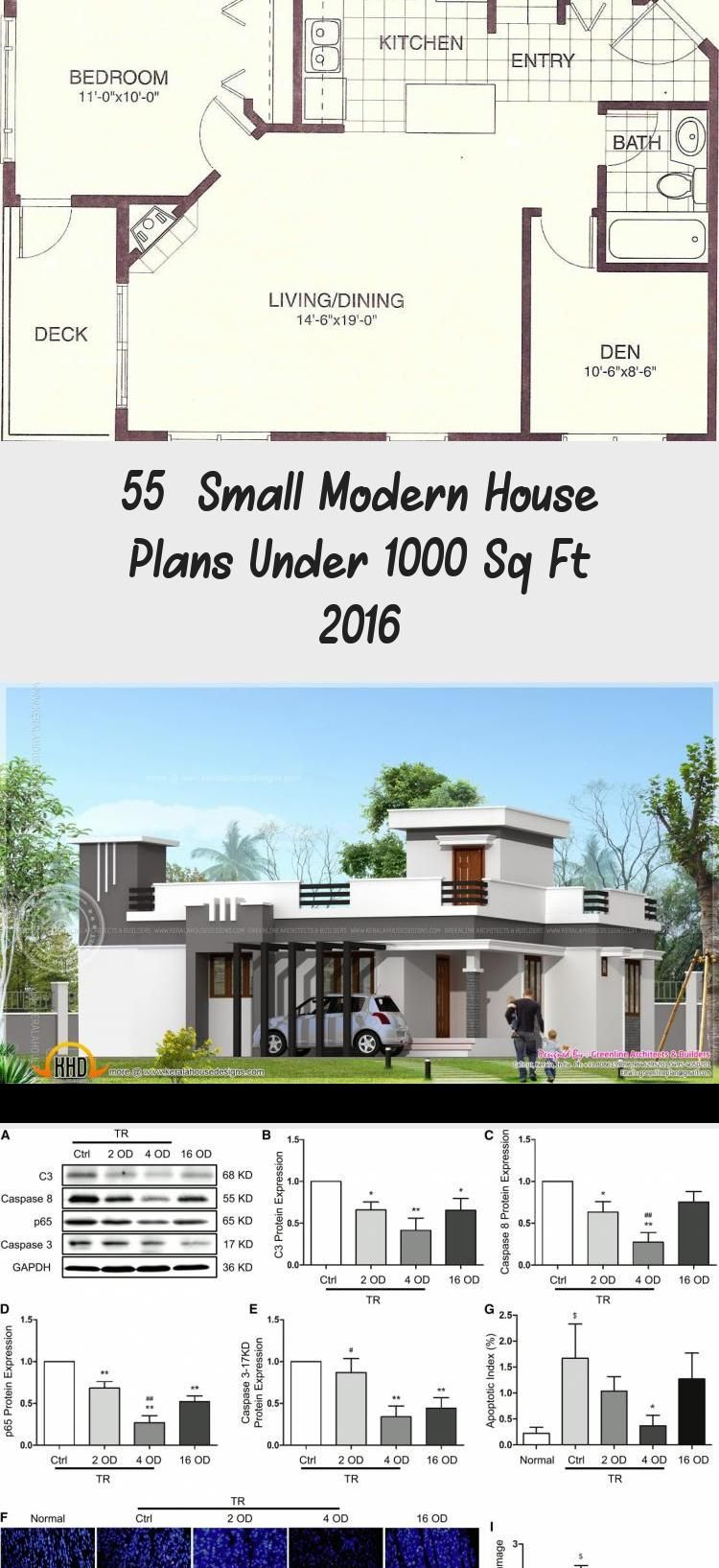 55 Small Modern House Plans Under 1000 Sq Ft 2016 Ruby S Blog In 2020 Small Modern House Plans Porch House Plans Small Modern Home
