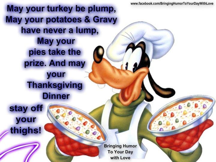 Funny Thanksgiving Quotes Enchanting Funny Thanksgiving Image Quote Thanksgiving Thanksgiving Pictures