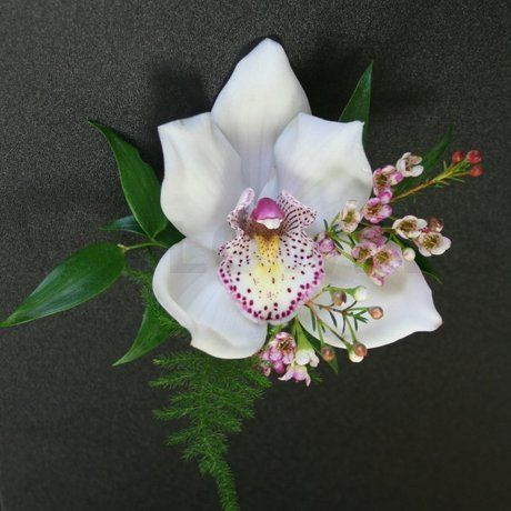 White Cynbidium Orchid Corsage With Pink Waxflower Orlando