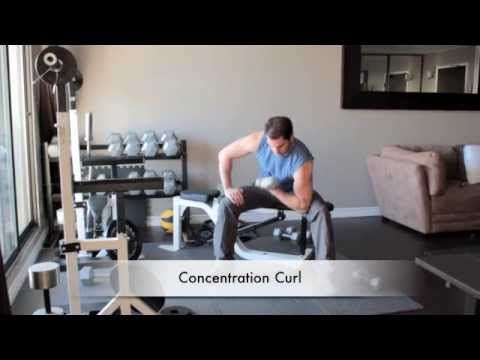 How to do Concentration Curl