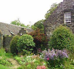 A cottage garden