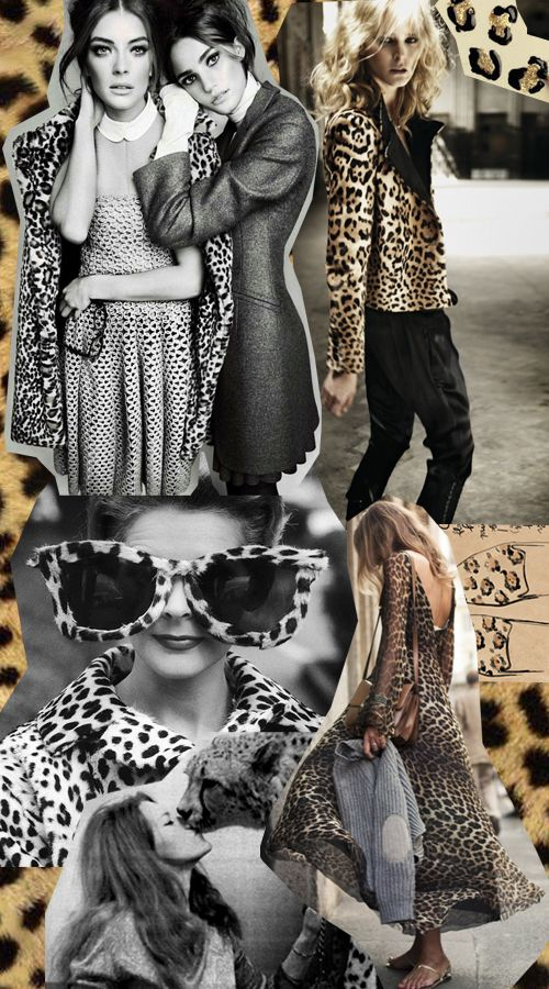Mood Board Animal Style Mood Board Fashion Inspiration Fashion Portfolio Mood Board Fashion