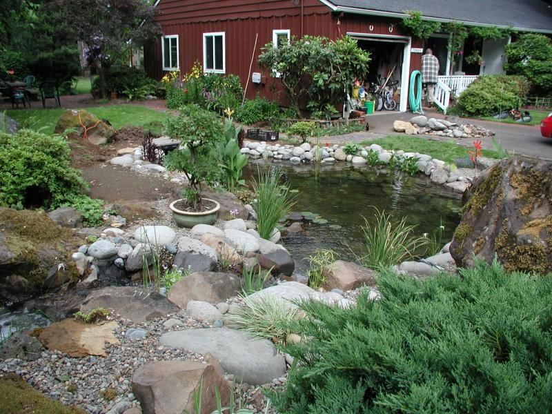 Small Yard Ponds Adorable Specialty Ponds Nw Photo Gallery 400 x 300