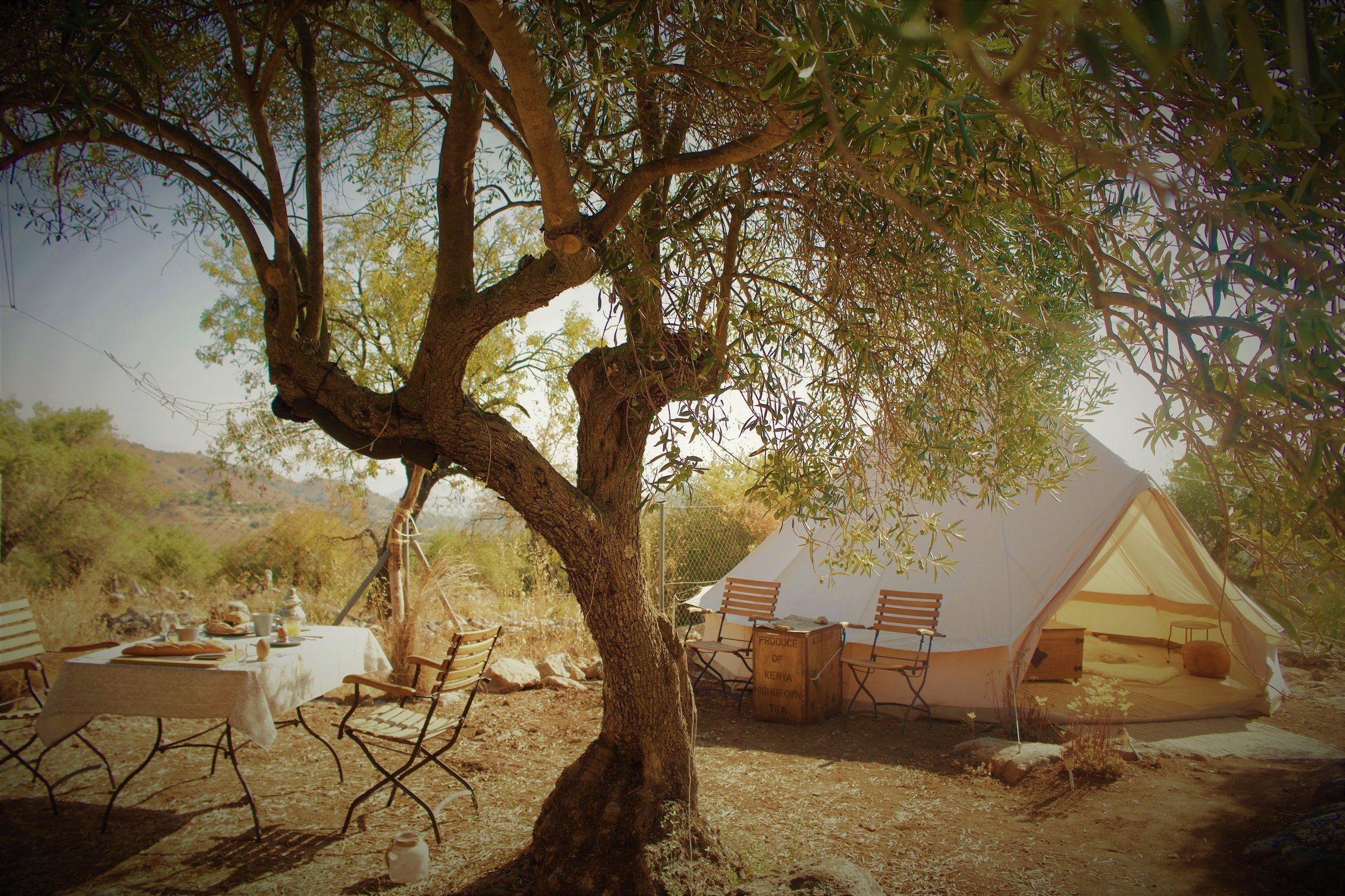 Camping Spanje Adalusie Marbella 4 Kampeerplekken Glamping Tent Living Andalusia