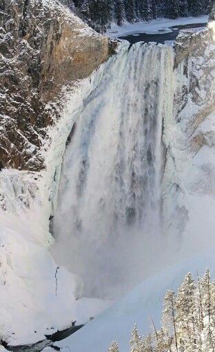 Lower Falls, Yellowstone Natuonal Forest