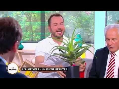 L'aloe vera : un élixir de beauté ! - YouTube