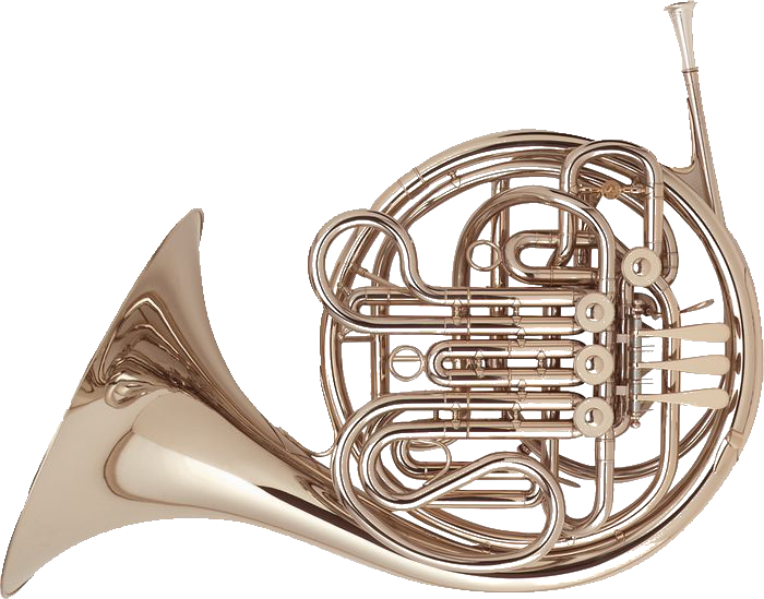 Holton H177 Professional Farkas French Horn Brand New French Horn French Horn Instrument Horns
