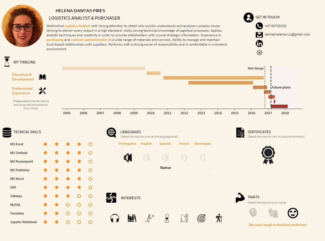 Helena Dantas Pires interactive CV resume on Tableau | Infographic ...