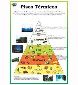 Gracias Amigos De La Revista Leer >> Lamina pisos termicos | shamuel | Pinterest