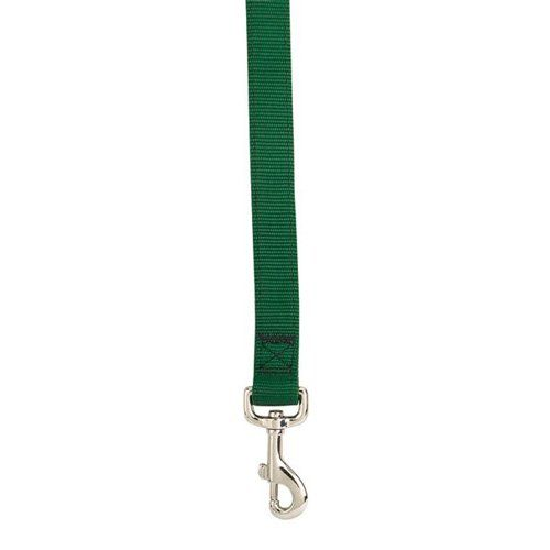 Double Layer Classic Dog Leash -- Startling review available here  : Dog leash