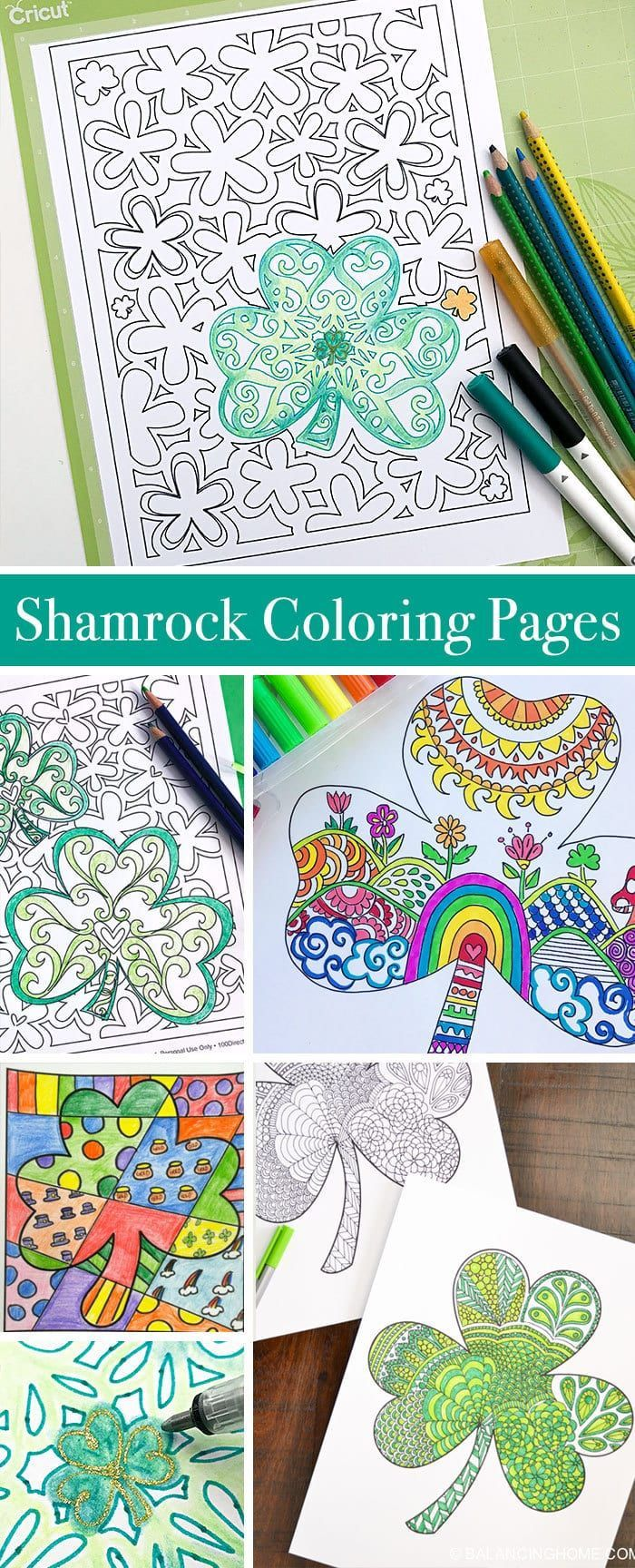 Shamrock Coloring Pages to Print and Color