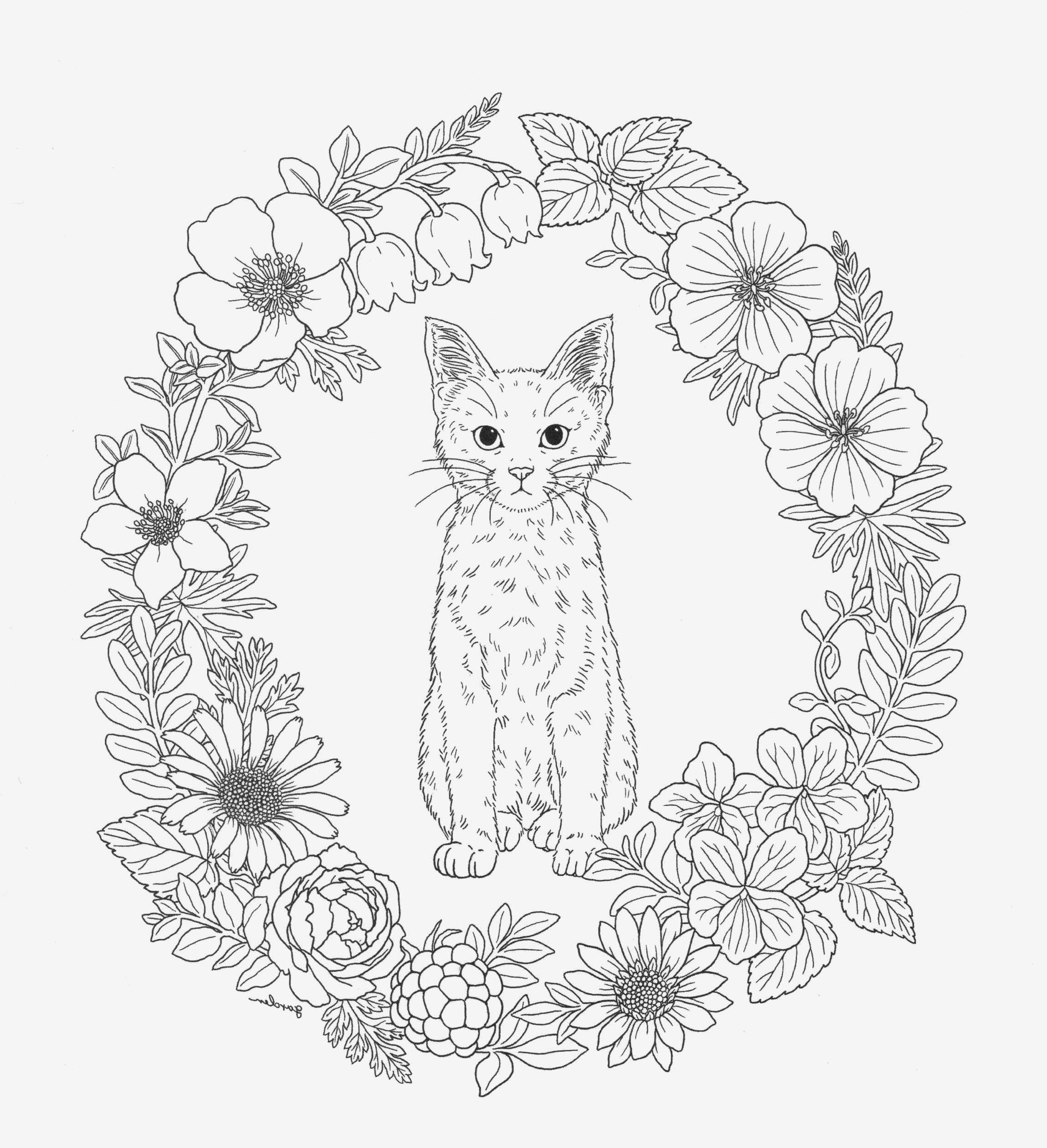 7 Forest Animals Worksheets Free Printable Forest Coloring