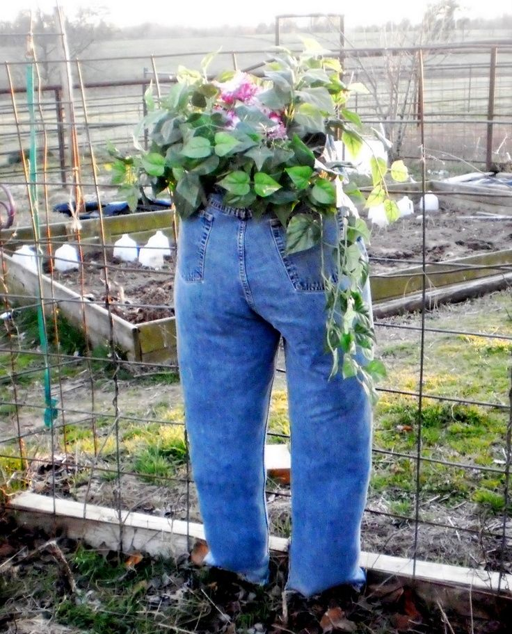 jean planters   Blue Jean Planter   For the garden