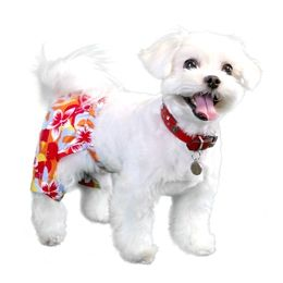 Tasmania Dog Swim Trunk Dog Swimsuits Bowwowsbest Com Pooch