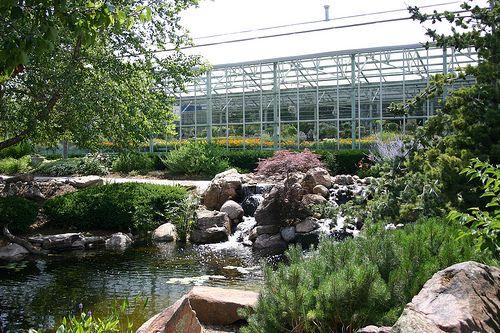 Lanoha Nurseries Pond Landscaping