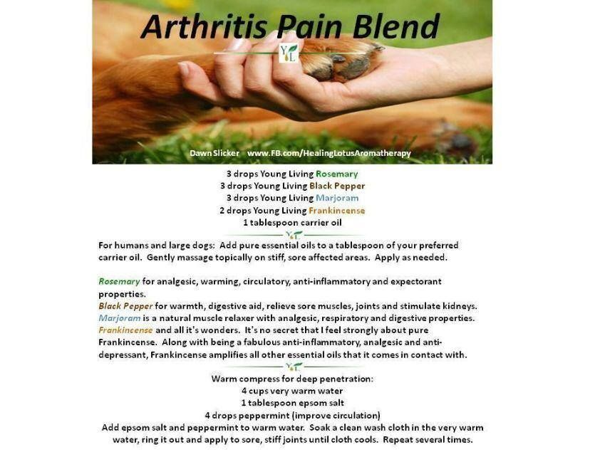 arthritis pain relief for our pet family interested in oils find, Muscles