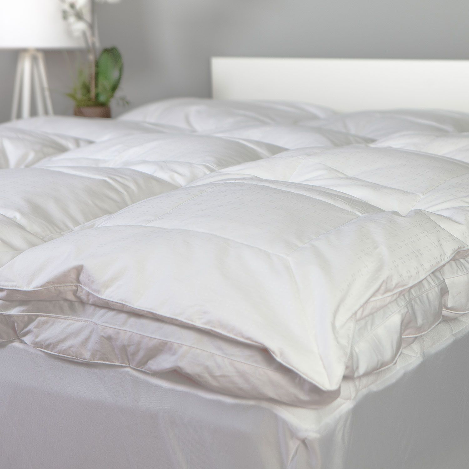 Homeluxe Luxury Feather Bed Various Sizes Sam S Club Feather Bed Bed Linen Design Bed