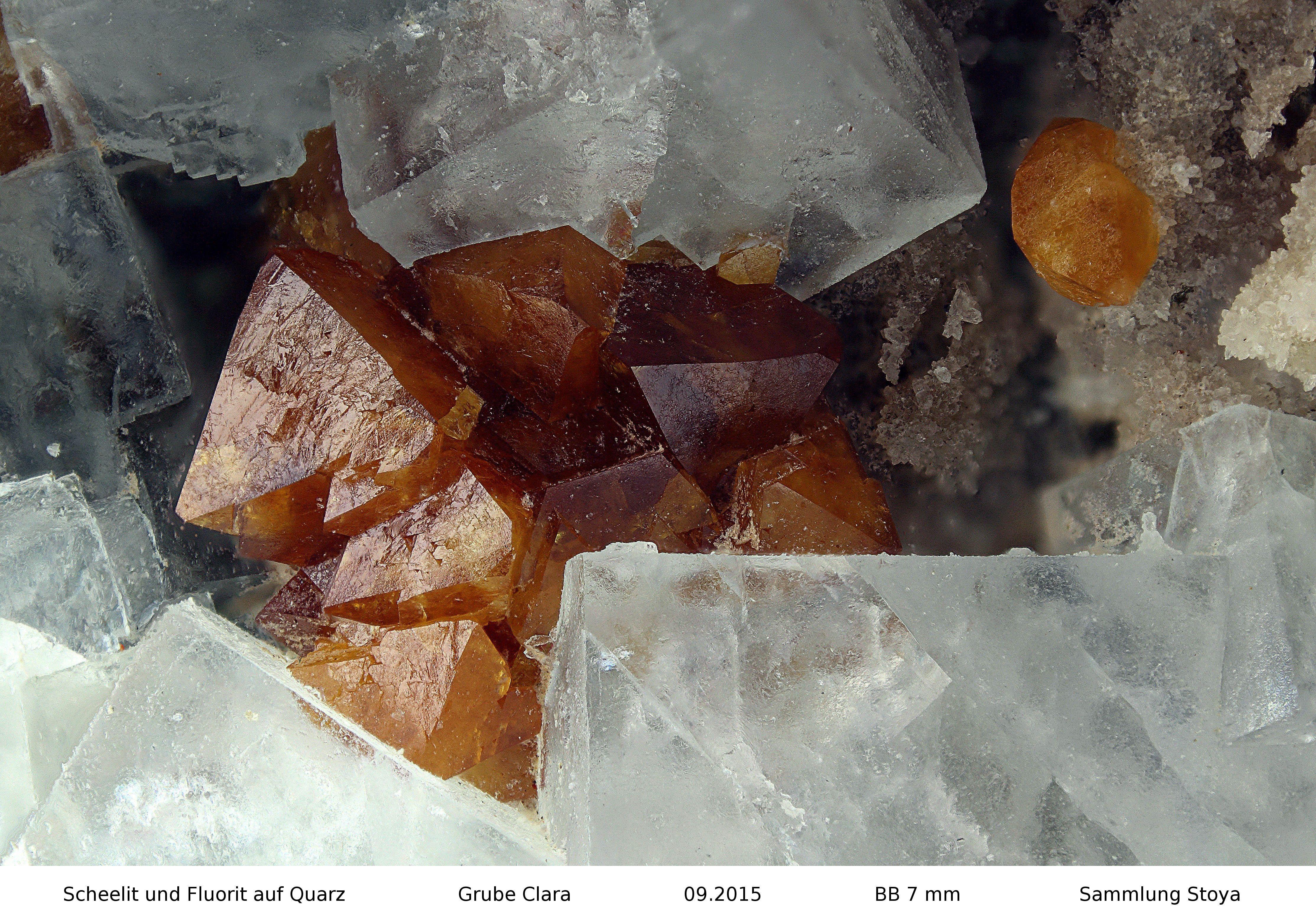 Scheelit   Clara Mine, Rankach valley, Oberwolfach, Wolfach, Black Forest, Baden-Württemberg, Germany Copyright © Stoya