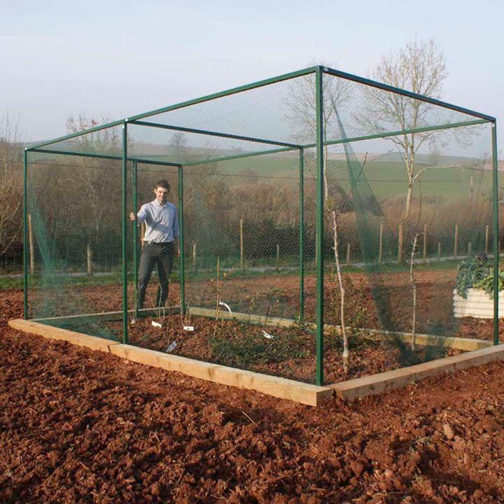 Build A Fruit Cage For Vegetable Containers Next To Raised Bed