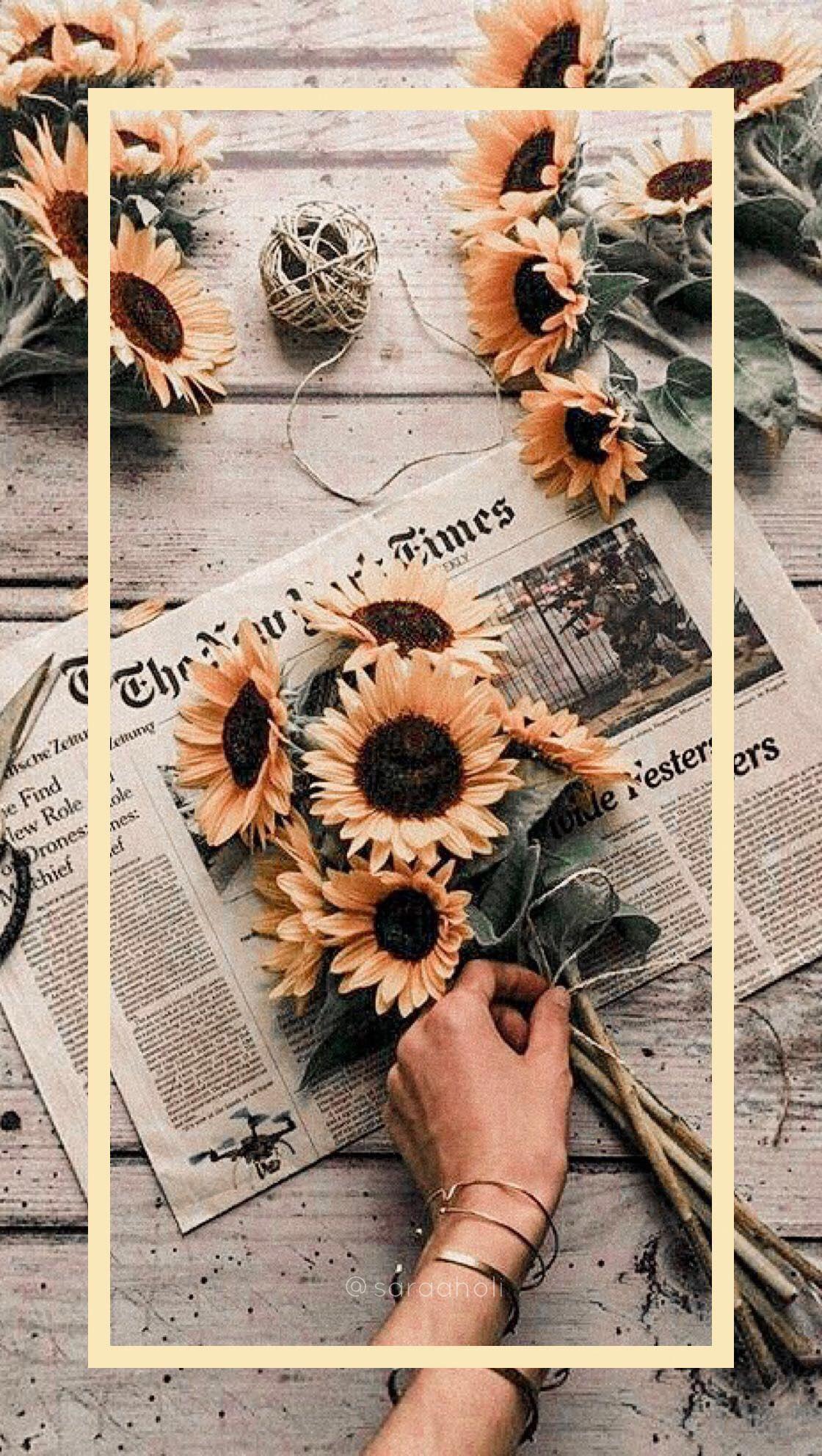 Aesthetic Aestheticwallpaper Iphonewallpaper Iphone Aesthetic Ipho Great Pretty Wallpa Aesthetic Iphone Wallpaper Sunflower Wallpaper Phone Wallpaper