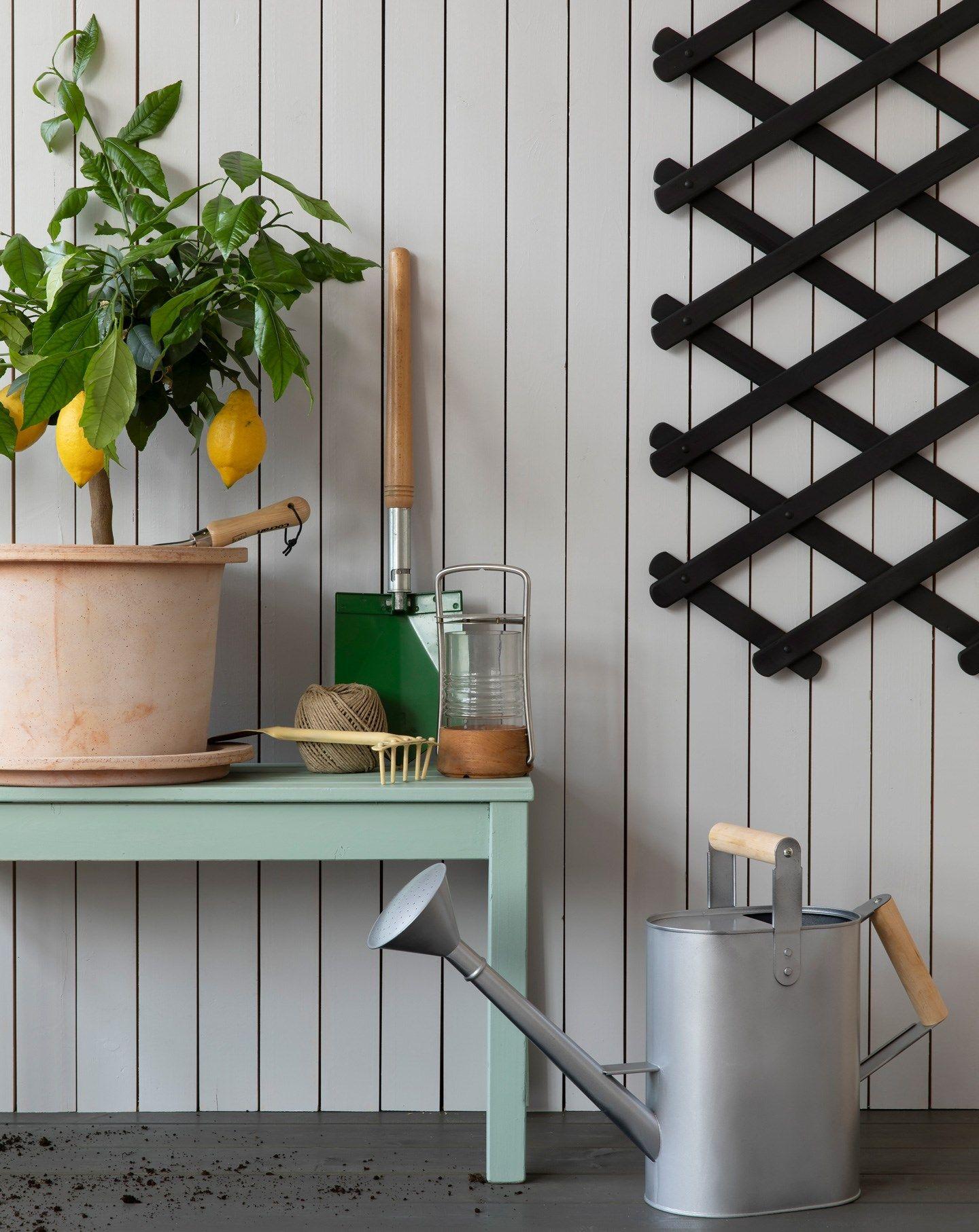 De 30+ beste bildene for DIY: Bengalack i 2020 | malte