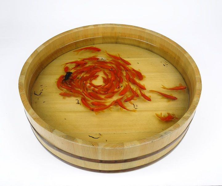 New Layered Resin Goldfish Paintings By Riusuke Fukahori - Incredible 3d goldfish drawings using resin