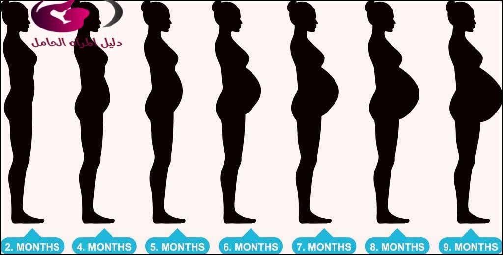 شكل الجنين في الشهر الثالث واهم التغيرات التي تطرأ على الجنين في هذا الشهر Https Ift Tt 2xeylos Silhouette Illustration Woman Silhouette Silhouette