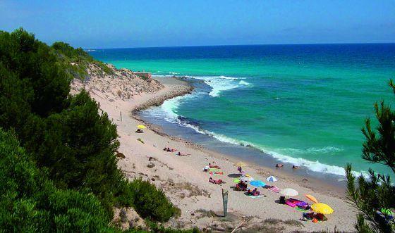 Playa De El Torn Naturista En L Hospitalet De L Infant