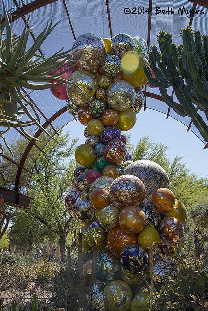 desert botanical gardens phoenix az with chihuly glass - Desert Botanical Garden Phoenix
