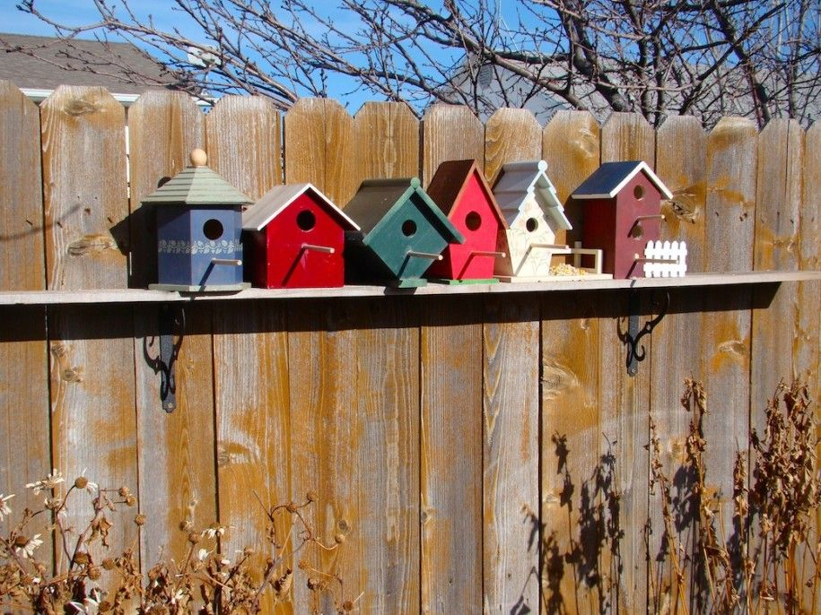 Birdhouse Design Ideas designs for birdhouses all about home ideas wooden decorative and feeders decora wooden bird house plans Outdoor Creative Bird House Design Inspirations Colorful Bird House Mounted On Wooden Fences