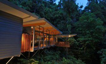 Modernes Haus Im Wald Baumhaus Mmp Architects Australien