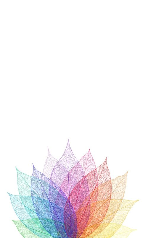 Minimal Colour Leaves Iphone Phone Wallpaper Background