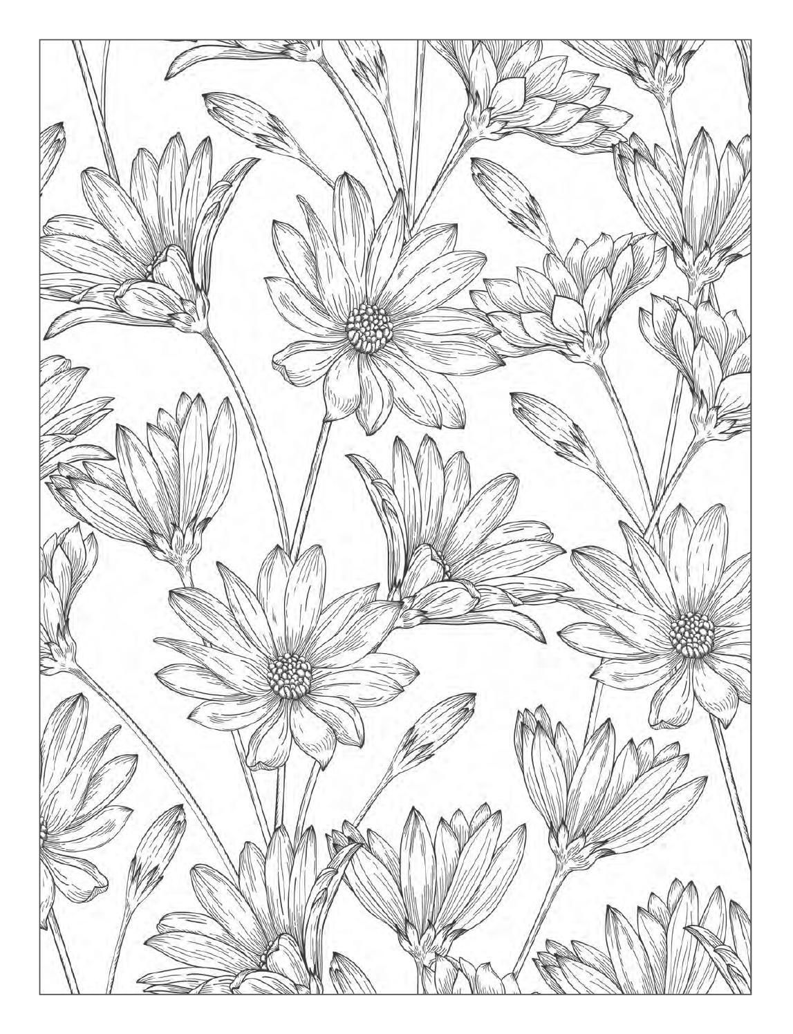 Beautiful Flowers Detailed Floral Designs Coloring Book Preview Clippedonissuu Designs Coloring Books Flower Coloring Pages Coloring Pages