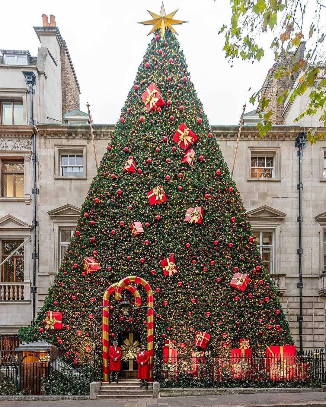 Google Image Result For Https I Pinimg Com Originals 92 1a D0 921ad099da31f6eca6b2f97b298ba204 In 2020 London Christmas Christmas Tree Pictures Funny Christmas Tree
