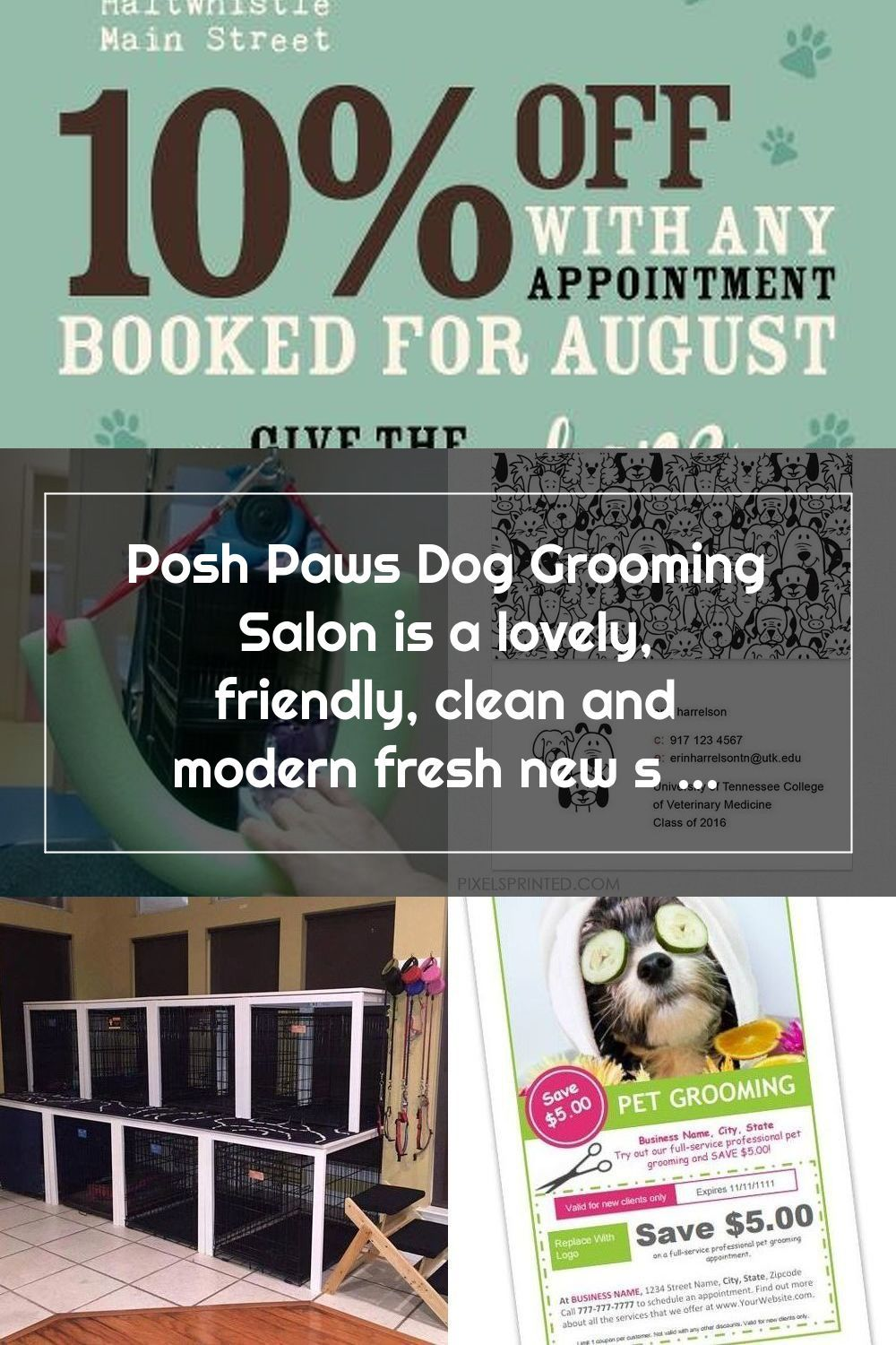 Posh Paws Dog Grooming Salon Is A Lovely Friendly Clean And Modern Fresh New Salon Situated In Northumberland In 2020 Dog Grooming Salons Dog Grooming Grooming Salon