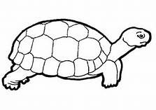 Printable Coloring Pages Of Reptiles Saferbrowser Yahoo Image