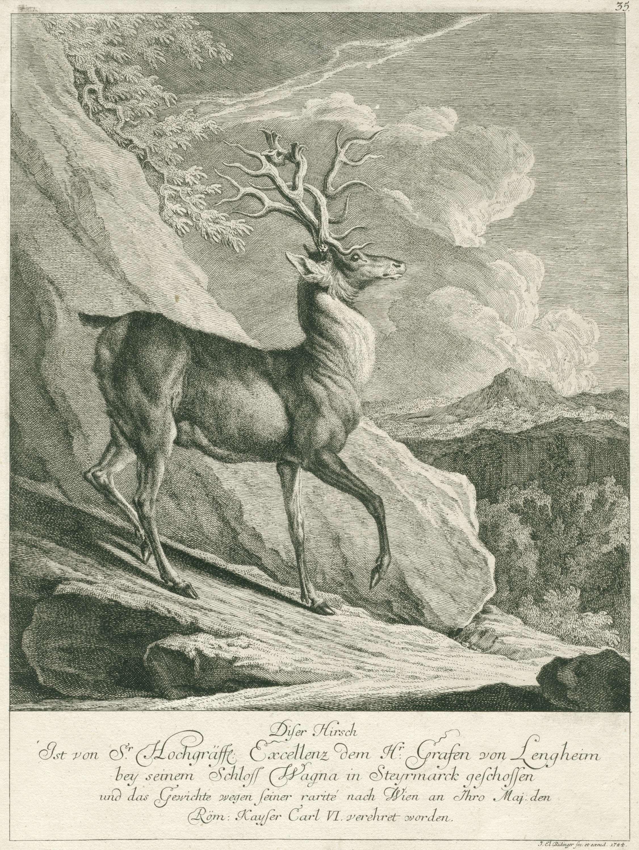 Johann Elias Ridinger | Een naar rechts gaand hert, Johann Elias Ridinger, 1708 - 1767 |