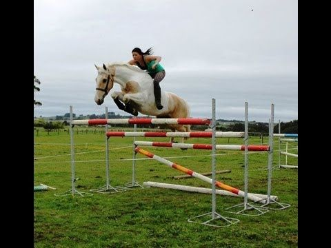 Free Riding BAREBACK AND BRIDLELESS Jumping 6ft These