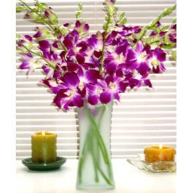 Fresh Flowers - Purple Dendrobium Orchids with Vase $34.95