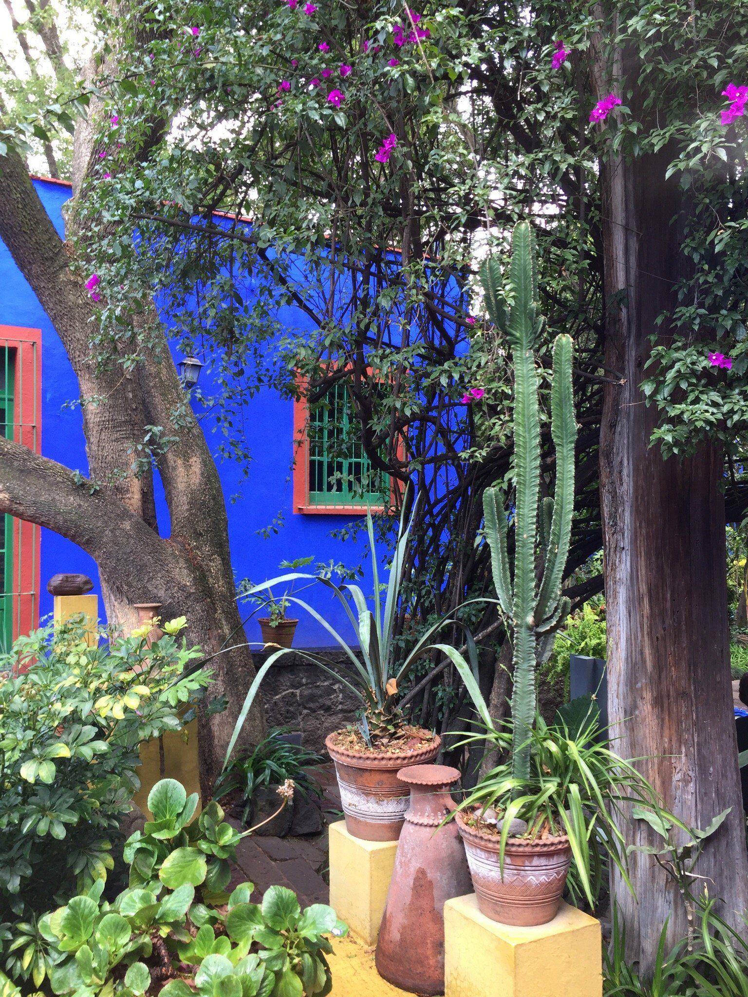 Museo Frida Kahlo (Ciudad de México) - consejos útiles antes de salir - TripAdvisor