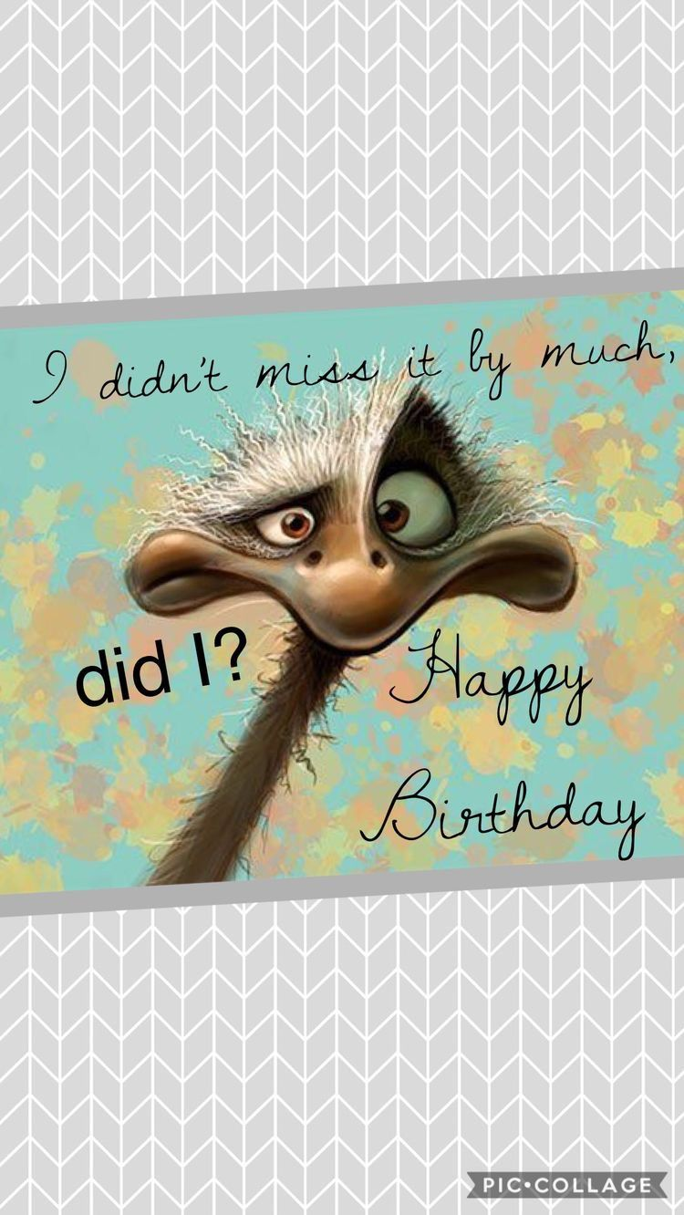 Pin By Gretha On Facebook Posting Belated Birthday Wishes Birthday Greetings Funny Birthday Wishes Funny