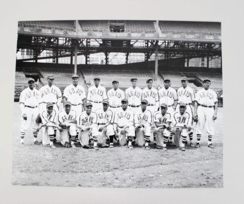 Negro League Homestead Grays Team 16×20 Photo From The Original Negative