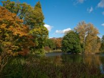 Royal Botanic Gardens in Autumn; VisitEngland/Royal Botanic Gardens, Kew/A. McRobb;