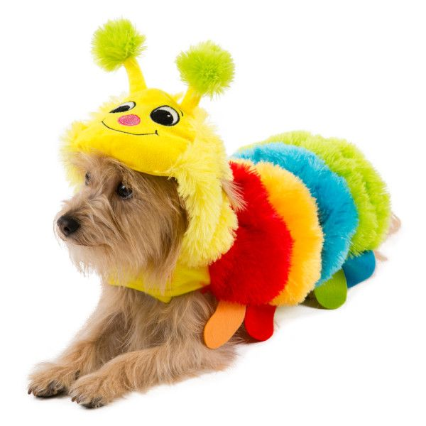 Top Paw Pet Halloween Caterpillar Costume Costumes Petsmart