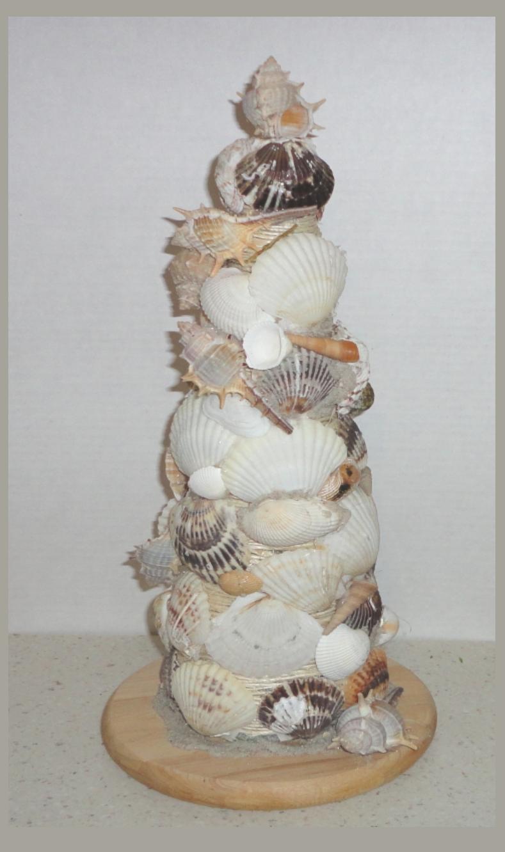 Pin by joy tresca on stuff i want to make pinterest sea shells