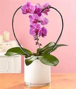 Happy Valentines Everyone Orchid Arrangements Valentines Flowers Valentine Centerpieces